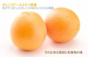 オレンジピールスキン