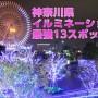 神奈川県 イルミネーション
