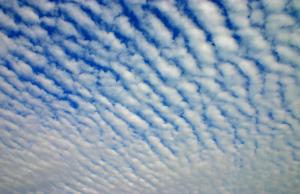 【巻積雲(けんせきうん)】うろこ雲、いわし雲、ひつじ雲 違い 天気予報