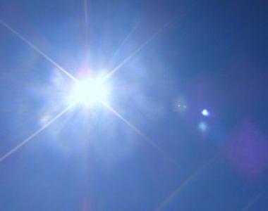 目やに太陽の光
